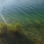 Eching II: herrlich klares Wasser, zum Angeln nicht ganz einfach!