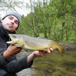 Sicher ein Ausnahmefisch in diesem Teil der Alb - Bachforelle mit 52cm.